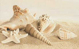 Amalfi sand decor 01
